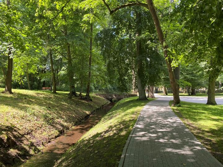 Park Miejski im. Aleksandra Majkowskiego